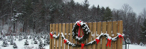 Holiday Christmas Wreaths